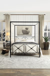 Rapa Black Queen Metal Canopy Platform Bed - Luna Furniture