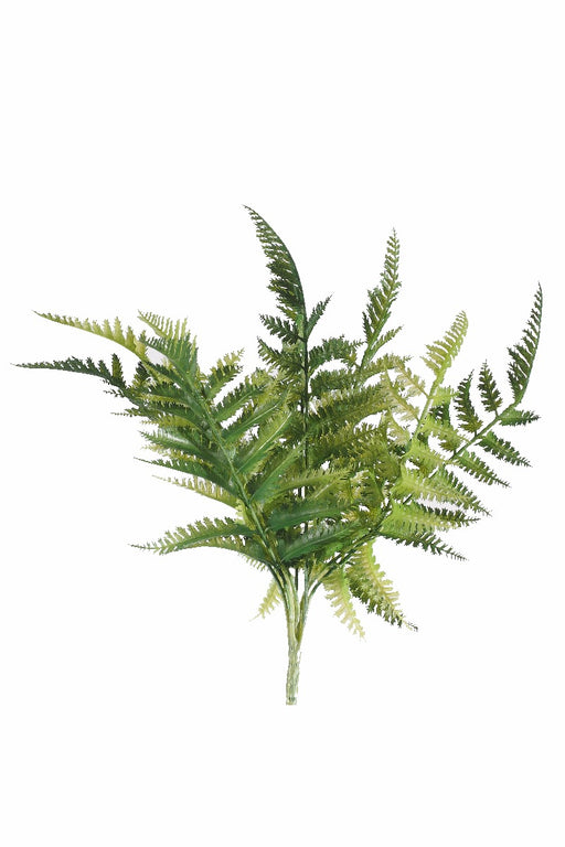 Dryopteris High Quality Green Fern Stem 30cm