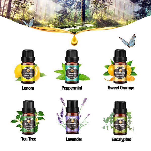 Innoo Tech Essential Oils Set for Diffuser, 6 x 10 ml
