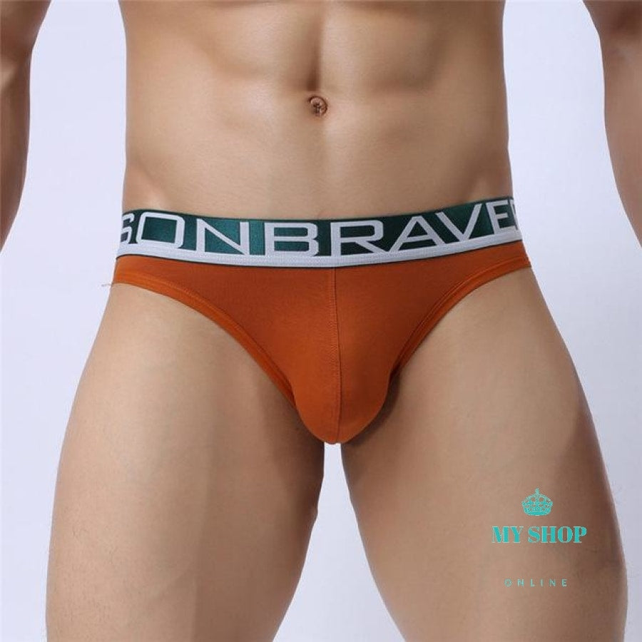 BRAVE PERSON Underwear Men Male Sexy Briefs Cotton Fabric Hollow Design Men Underwear Briefs Men Underpants B1159 Gay Underwear - myshoponline.com