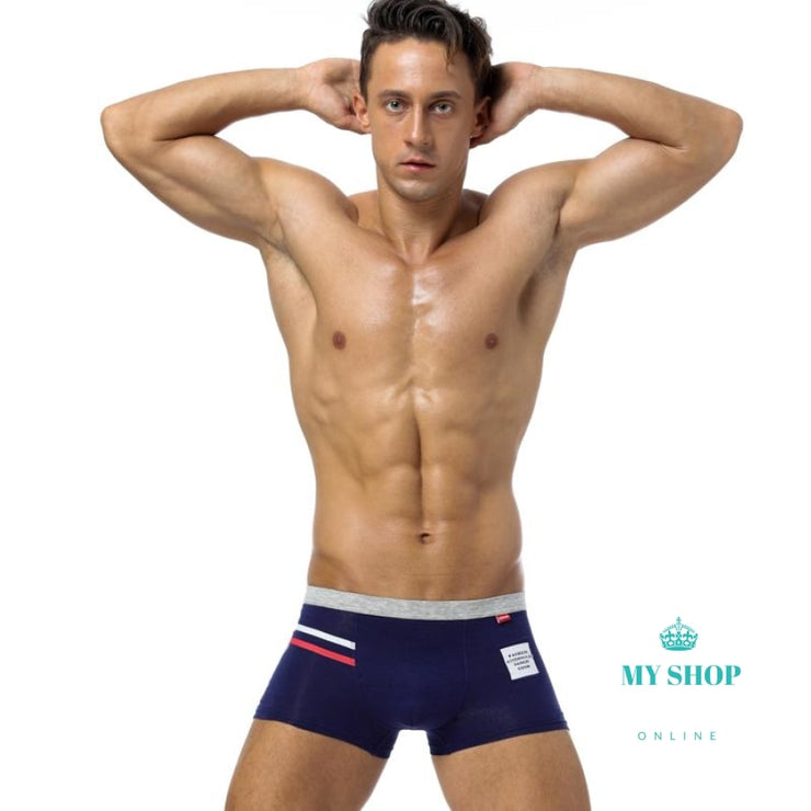 Men Boxer Shorts Cotton Ropa Intérieur