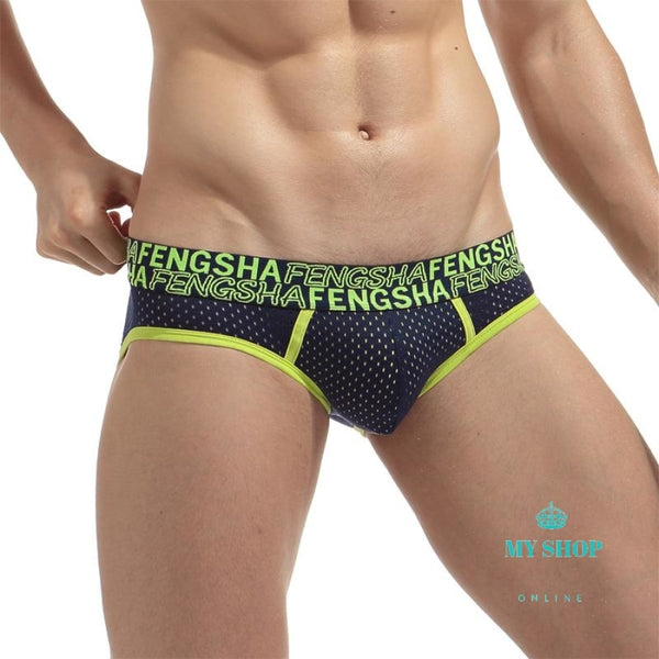 Men Super Cool Ice Silk Mesh Breathable Sexy Briefs Male Pouch Underwear Underpants Black / M