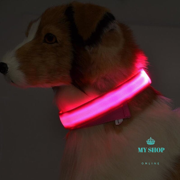 Necklaces Fluorescent Luminous Dogs Night-Time Flashing Light Cosmetic