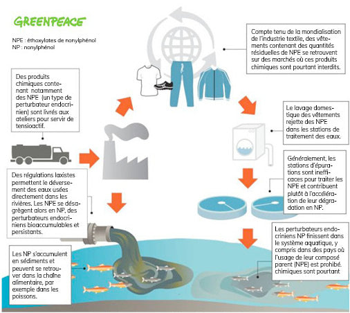 Perturbateurs endocriniens cycle toxique des vêtements Greenpeace