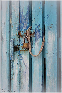 Blue Shed Door