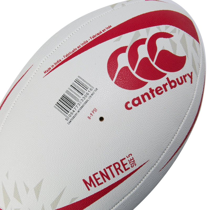 British & Irish Lions Training Ball - Absolute Rugby