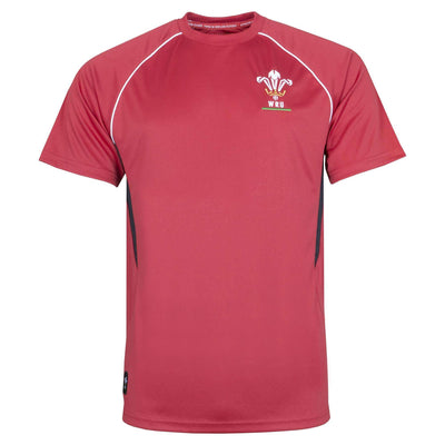Wales Rugby Kids Panel Tee - Six Nations Rugby