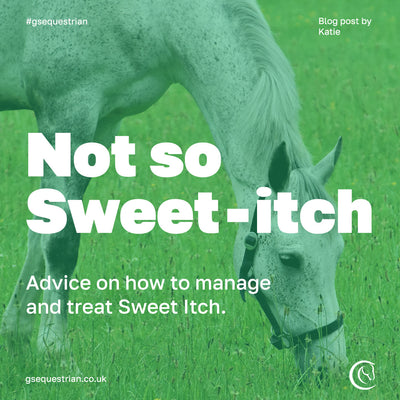 Not so Sweet-Itch: Advice on how to manage and treat Sweet Itch