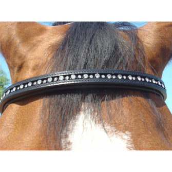 PROTACK Browband Diamante 315 3106