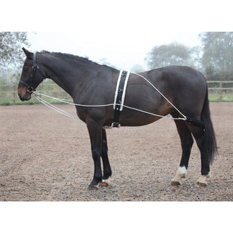 SHIRES LUNGING AID 435