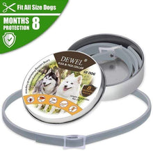 4 Generation Dog / Collar / China Anti Flea Dog Collar