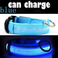 Blue / L USB Rechargeable LED Dog Collar