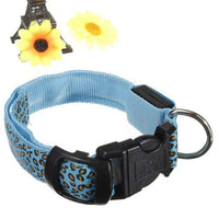 Blue LED Dog Collar in Leopard Pattern