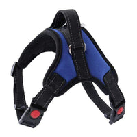 BLUE / S Nylon Dog Harness