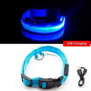Blue USB Charging / XS  NECK 28-40 CM Anti-lost/Avoid Car Accident All Seasons Striped USB Charging LED Dog Collar For Dog