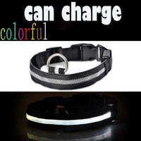colorful / L USB Rechargeable LED Dog Collar