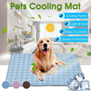 Cooling Breathable Washable Summer Dog Bed For Small Medium Large Dogs