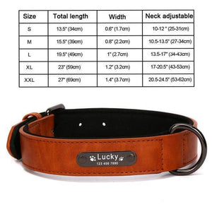 DarkOrange Collar / L 8 Colors Personalized Leather Dog Collar for Pitbull Pug