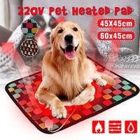 Electric Heating Pad for Dog