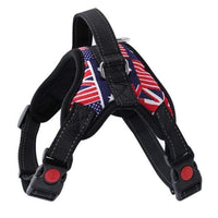 ENGLAND / S Nylon Dog Harness