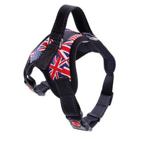 Flag Style / S Dog Harness/Leash with Breathable Mesh and Reflective Tape S/M/L/XL