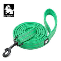 grass green / L 2.5cmX200cm / Russian Federation Reflective Soft Nylon Mesh Dog Leash/Harness and Collar for Dog Training and Walking