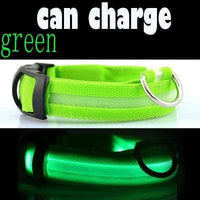 Green / L USB Rechargeable LED Dog Collar