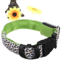 Green LED Dog Collar in Leopard Pattern