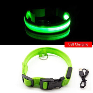 Green USB Charging / XL NECK 52-60 CM Anti-lost/Avoid Car Accident All Seasons Striped USB Charging LED Dog Collar For Dog