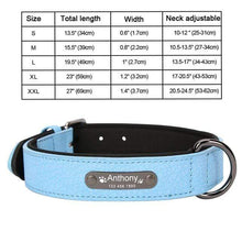 NC Blue Collar / M 8 Colors Personalized Leather Dog Collar for Pitbull Pug