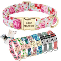 Nylon Dog Collar with Engravable ID Tag/Nameplate For Small Medium Large Dogs
