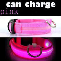 Pink / L USB Rechargeable LED Dog Collar