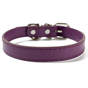 Purple / XL PU Leather Cat Collar in a Solid Pattern for Cat Kitten with Adjustable Strap
