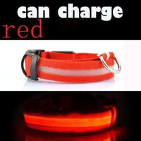 Red / L USB Rechargeable LED Dog Collar