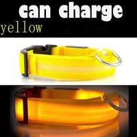 Yellow / L USB Rechargeable LED Dog Collar