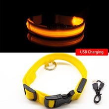 Yellow USB Charging / XS  NECK 28-40 CM Anti-lost/Avoid Car Accident All Seasons Striped USB Charging LED Dog Collar For Dog