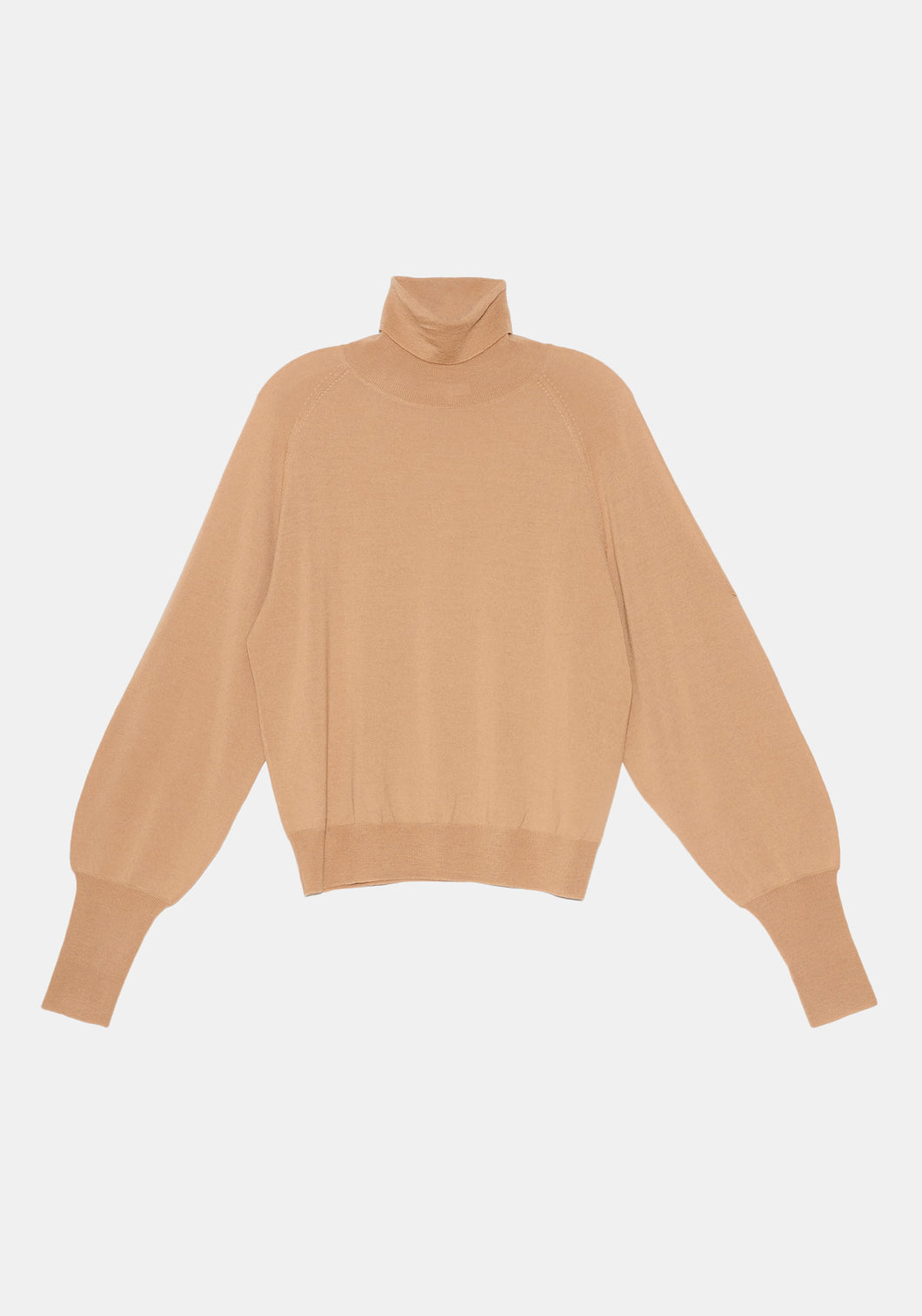 Rosalee Turtleneck Sweater