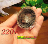 Coospider UVB Tungsten Halogen Bulb Warm Area in Terrariums for Reptile Pets Fit E27 Base 110v 220v available, UVB 3.0 UVA UVB - checkwayelectrotech.com