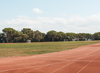How a 20-second Sprint = a 45-minute Run