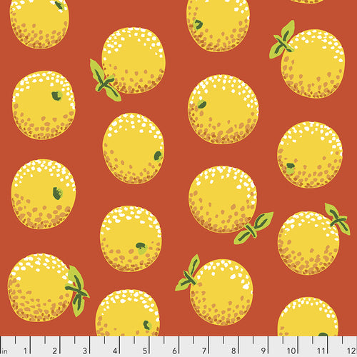 Kaffe Fassett Oranges - Yellow