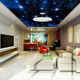 ceiling-mural-night-star-sky