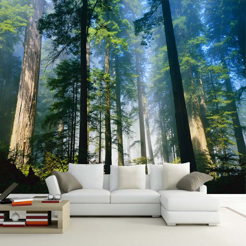 Foggy Forest Wallpaper Mural