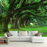 custom-wall-mural-wallcovering-nature-landscape-wallpaper-green-forest