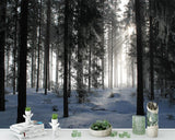 custom-size-wall-mural-3d-wallcovering-decorative-wallpaper-black-and-white-trees-forest-scene-background-wall-painting-landscape-snow-mountain-forest