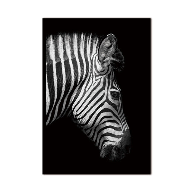 Hd Animal Canvas Wall Art Nordic Black White