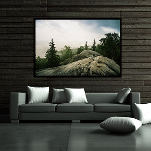 art-wall-picture-canvas-painting-print-stone-and-trees-on-painting-decoration-for-living-room-wall-picture-cuadros-no-frame