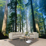 custom-3d-wall-murals-wallpaper-nature-fog-towering-trees-forest-sunshine-photo-wallpaper-living-room-mural-papel-de-parede-3d
