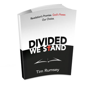 Divided We Stand (ePUB)