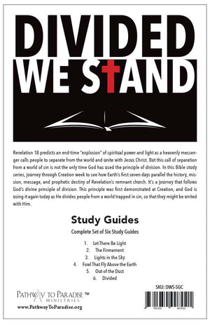 Divided We Stand (Study Guides)