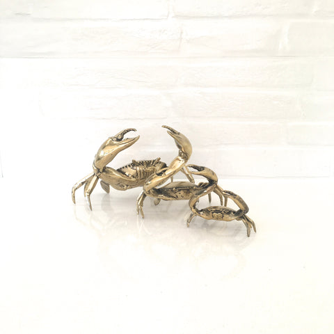 Harry the Brass Crab (Medium)